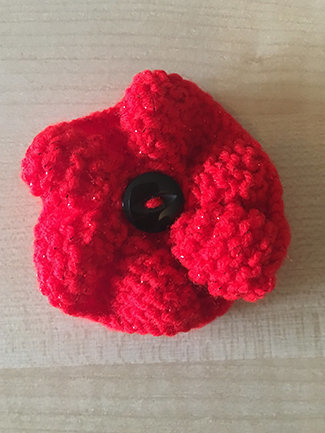 Residents at Broomhills knitted poppies for the Poppy Appeal