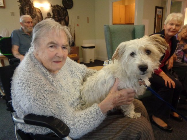 Residents at Waterfield House get involved in calming pet therapy.