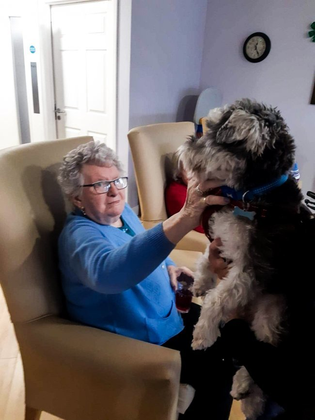 Residents at Oak Tree Manor in Dunmurry enjoy pet therapy with Charly the dog.