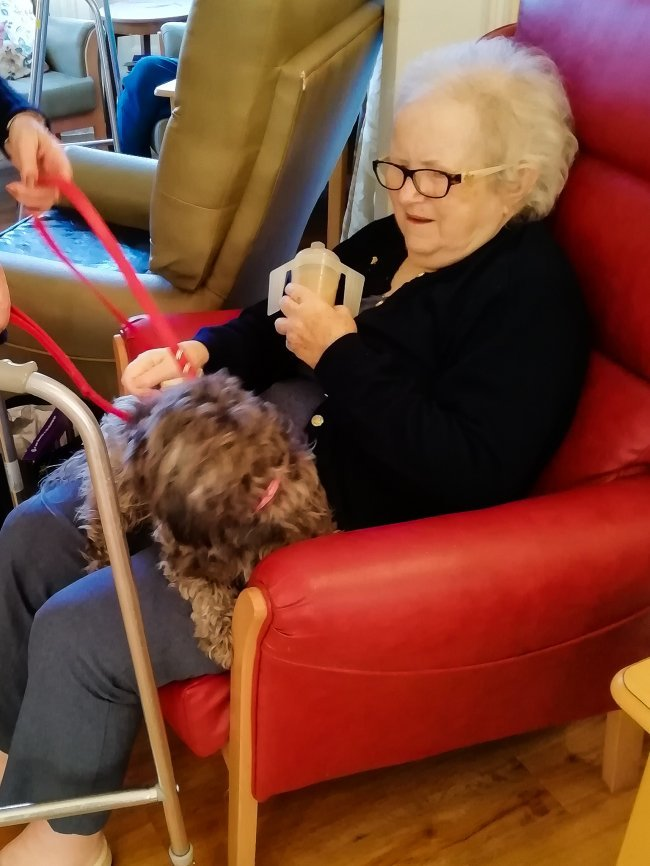 Fury friend visits residents at Eastham care home in Chelmsford.