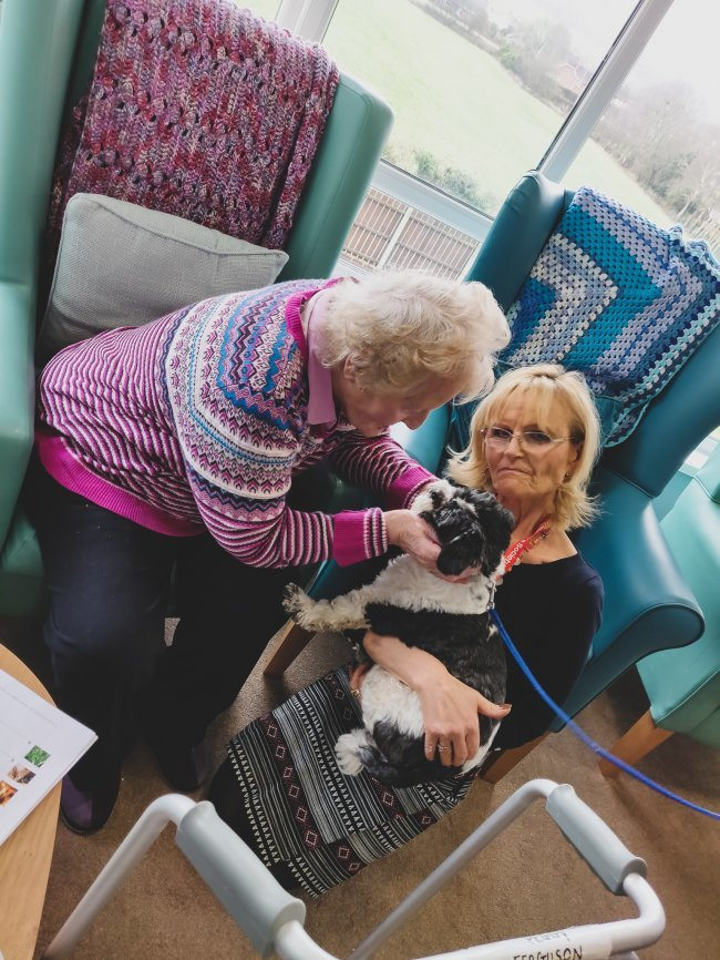 Meadow View care home pilot project with the Alzheimer's Society.