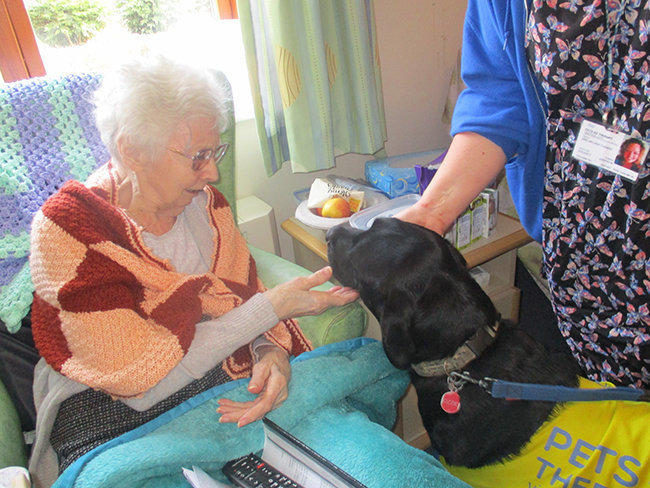 Runwood Residents benefit from Pet Therapy